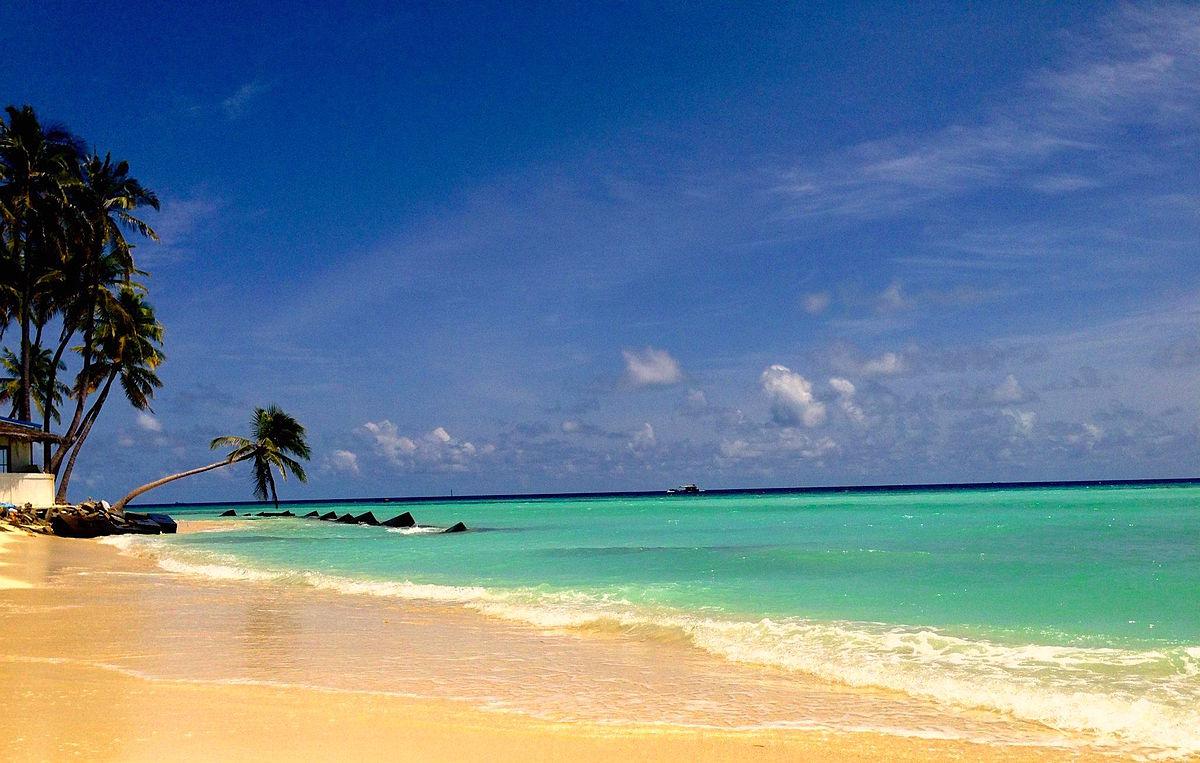 Top des activités à faire dans les îles Maldives