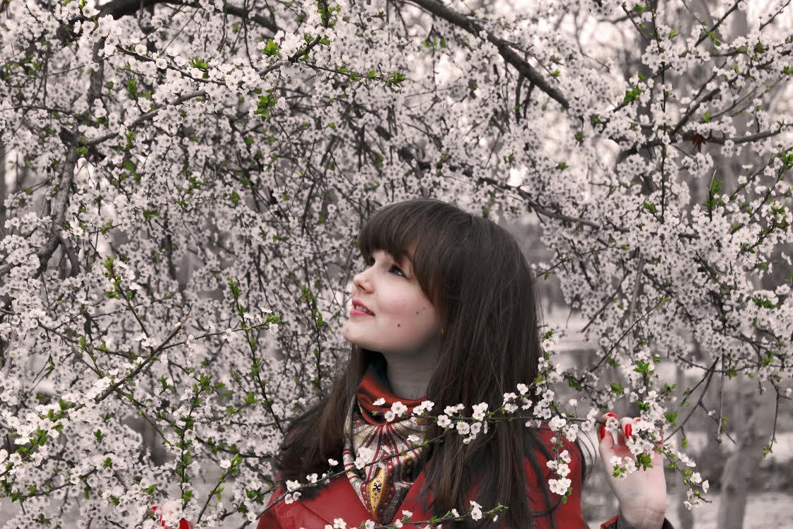 Est-ce qu'il y a une saison idéale pour partir au Japon ?