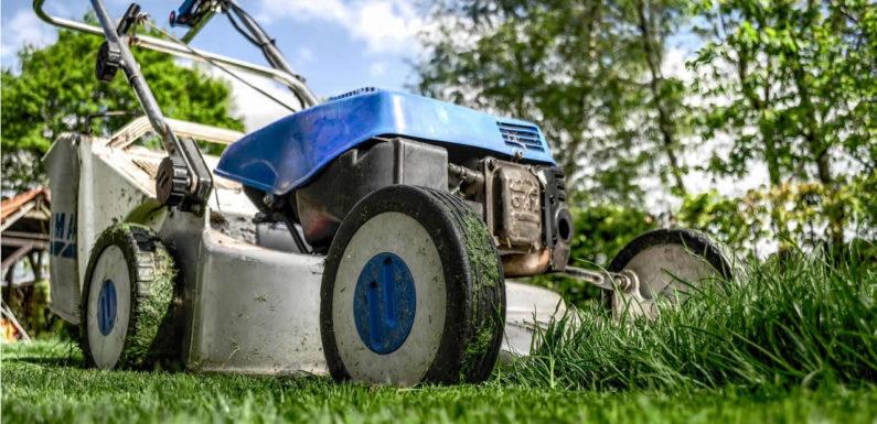 Actions à mener pour avoir une belle pelouse