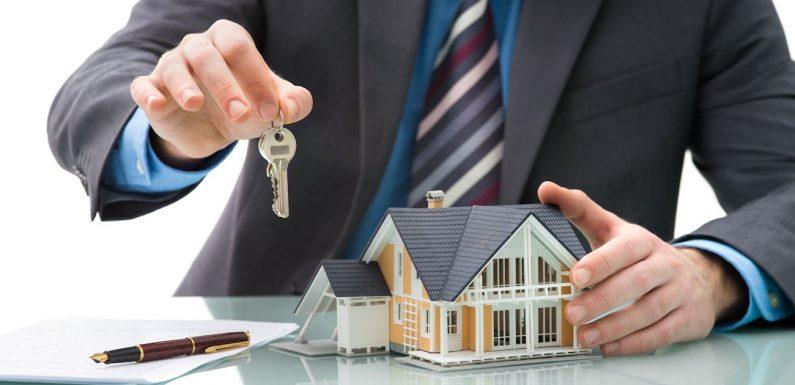 Cadre d'intervention d'une agence de conseil en immobilier professionnel