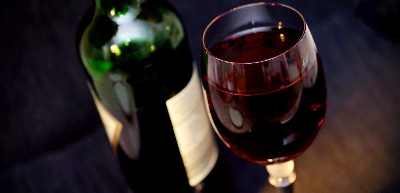 Quelques destinations européennes pour goûter les meilleurs vins