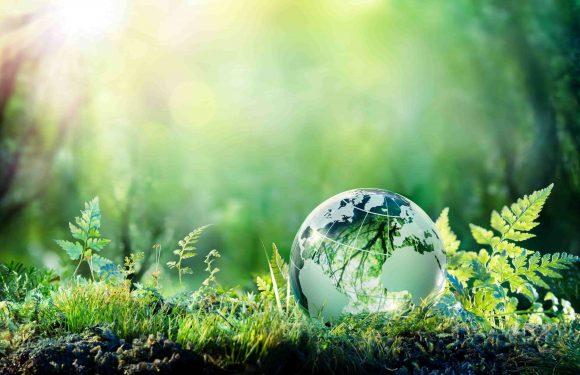 Comment les billes en biocéramique peuvent changer vos habitudes et aider la planète