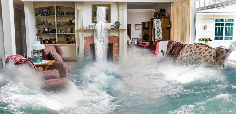 Moisissures et maisons inondées