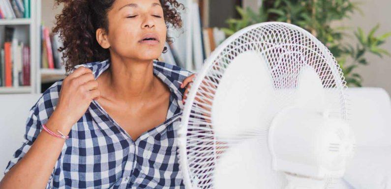 Quel est le meilleur ventilateur pour affronter la chaleur?